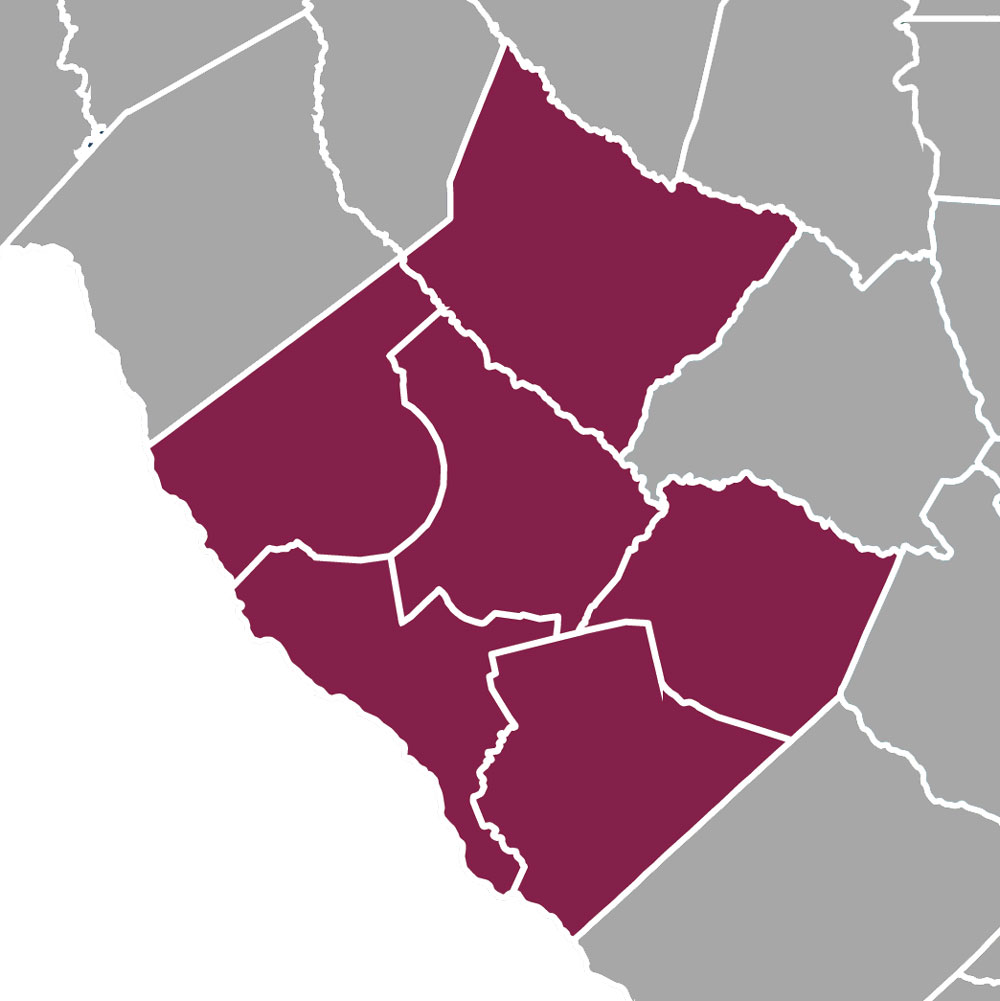 Counties that Make Up the Upper Savannah Council of Governments Region